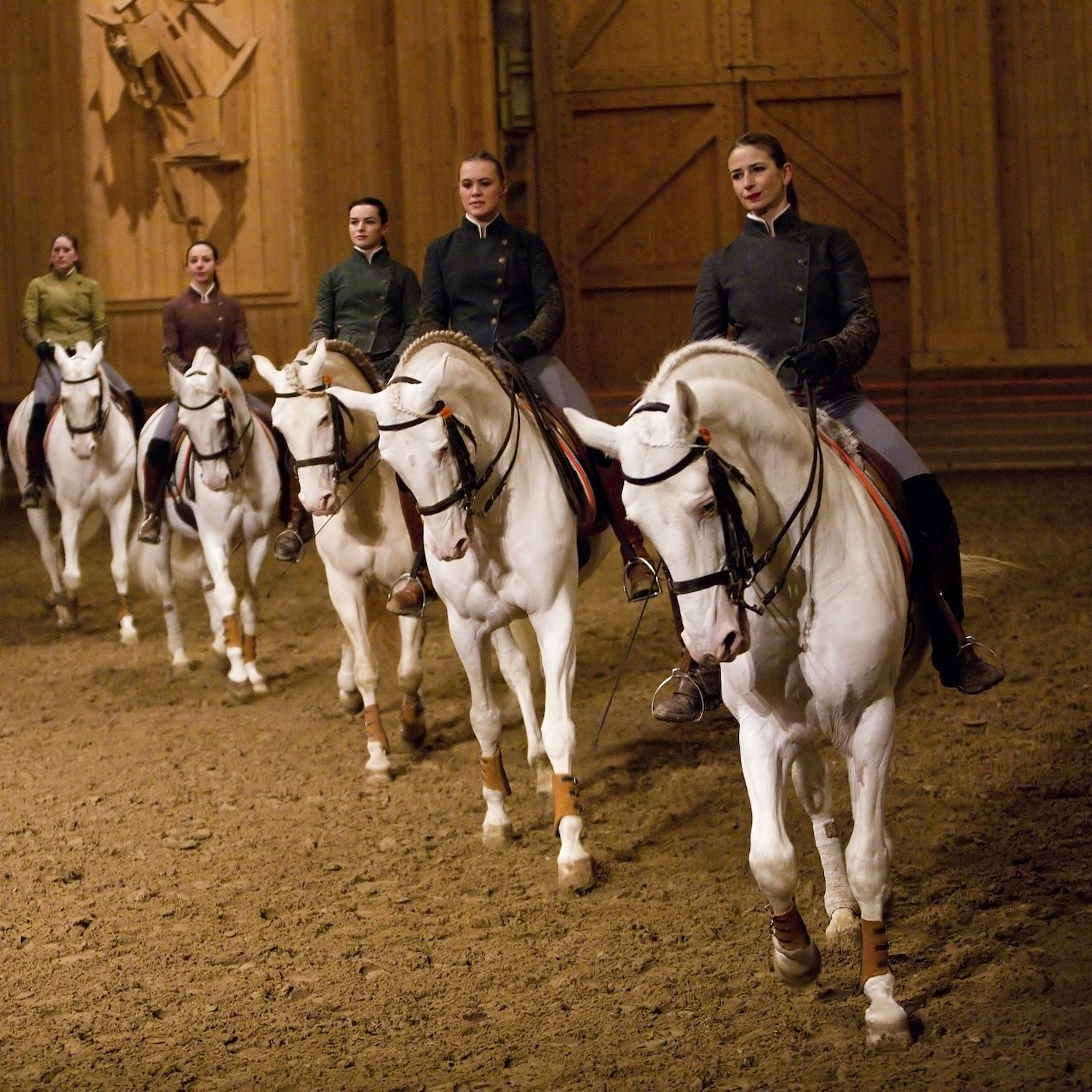Activity: Versailles Royal Stables Experience